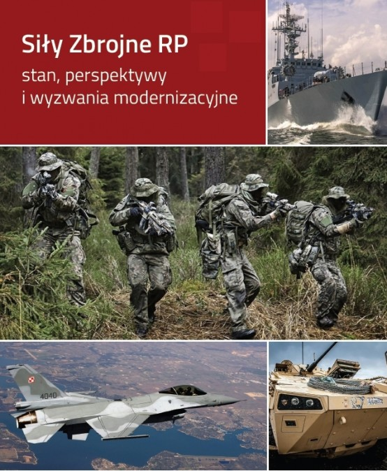 The Polish Armed Forces – current state, perspectives and modernization challenges