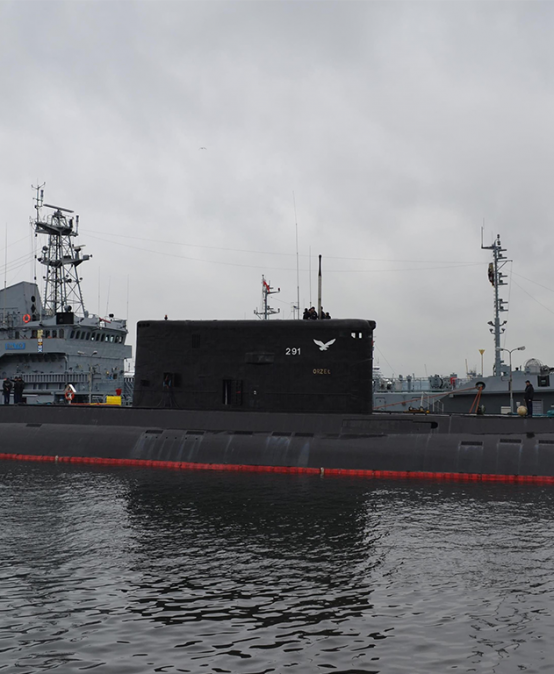 TRISEMINAR: The Future of Submarines in the Polish Navy