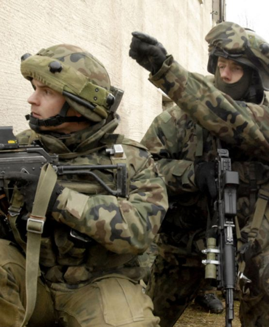 Poland's Territorial Defence Force – Its Role, Significance and Tasks