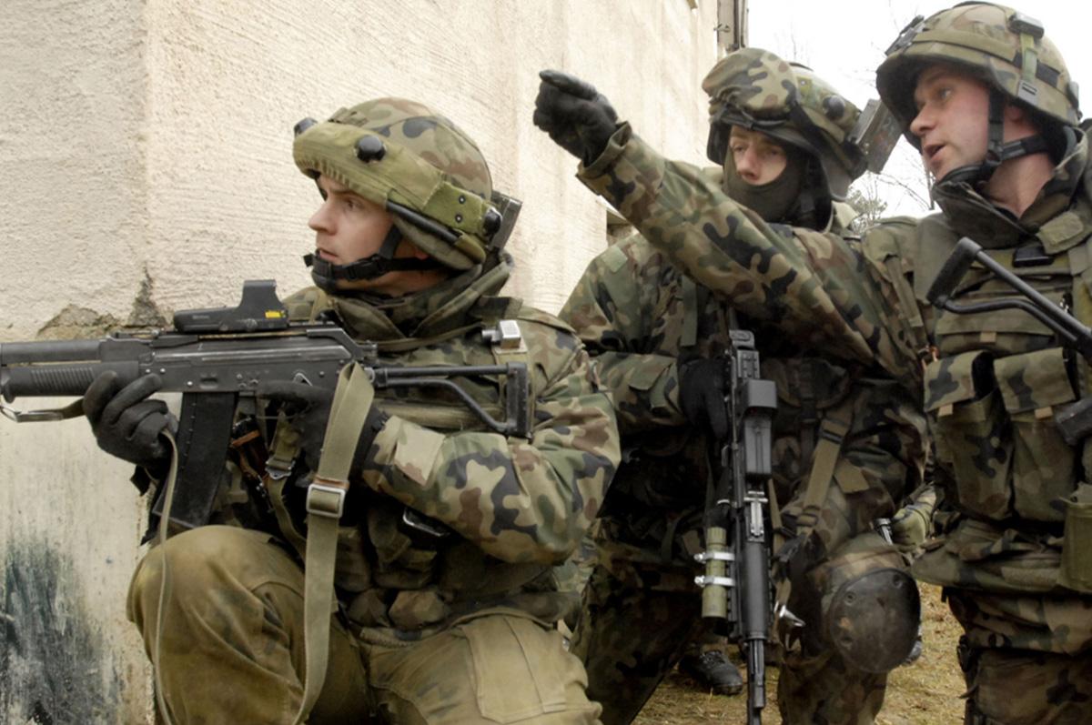 ANALIZA: Wojska Obrony Terytorialnej – rola, miejsce izadania?