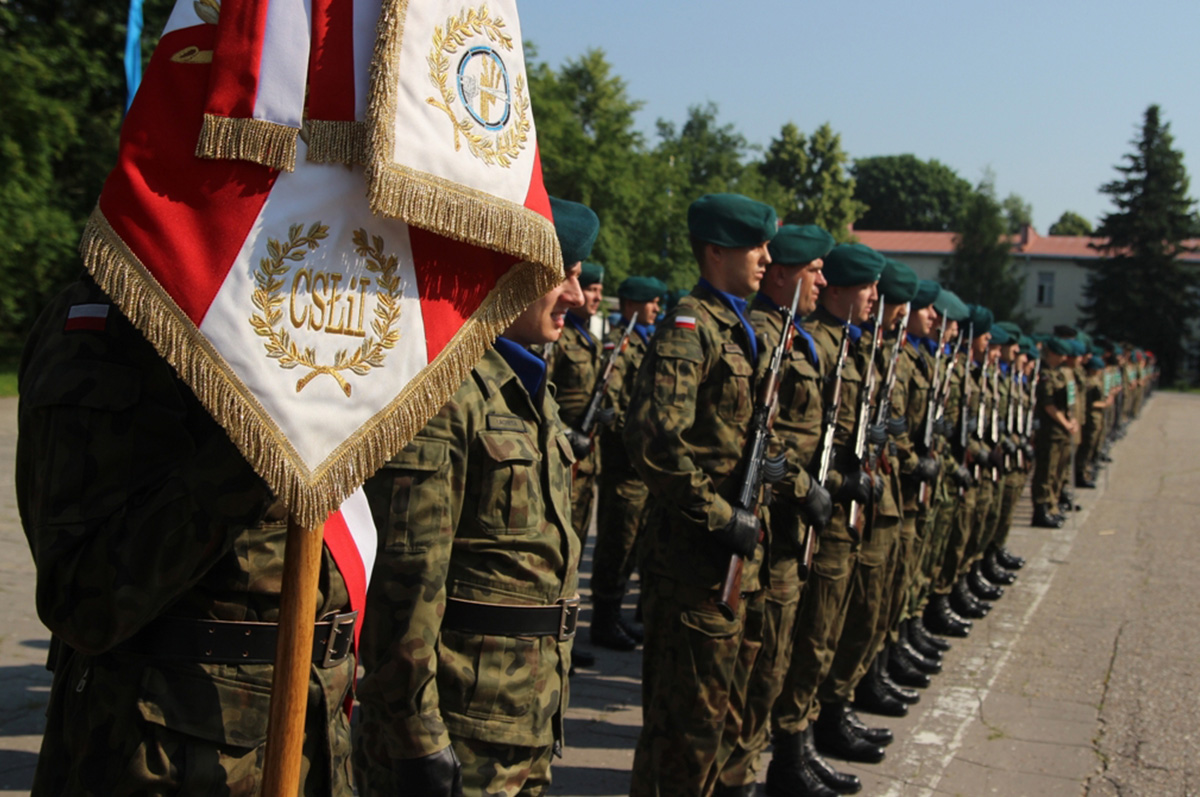 ANALYSIS: Proposed changes to the Land Forces Battalions